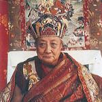 KyabyeDilgoKhyentseRinpoche